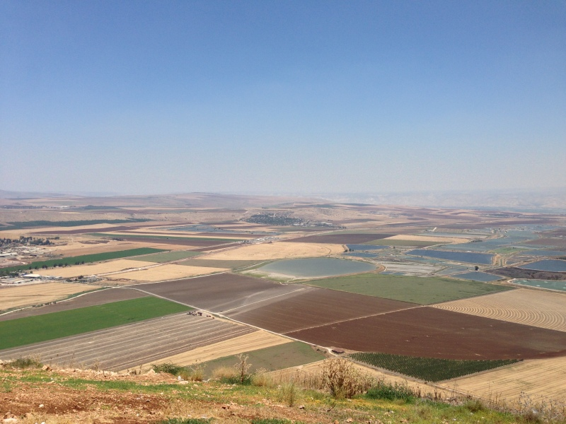 Farm land in Israel. The blue sections are fish farms!